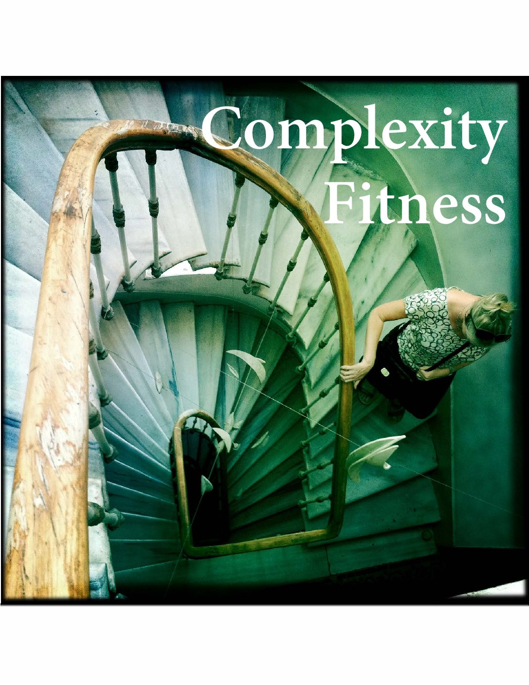 COMPLEXITY FITNESS WORKSHOP  FOR INTERNATIONAL AID AND PEACE PROFESSIONALS